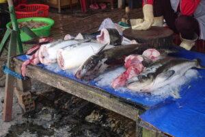 Phu Quoc Markt