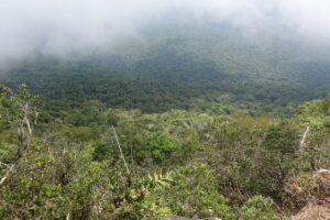 Ausblick von der Bokor Hill Station